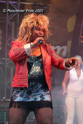 Tina Turner Tribute Act